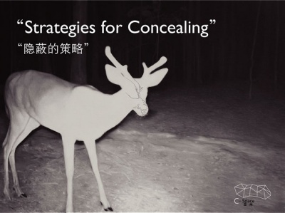STRATEGIES FOR CONCEALING (group) @ARTLINKART, exhibition poster
