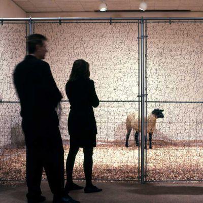 """第一个是两块用粗铁丝编织出来的巨大""""字网""""一块将展厅入口封起来"""