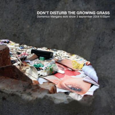 DON'T DISTURB THE GROWING GRASS - DOMENLCO MANGANO SOLO SHOW (group) @ARTLINKART, exhibition poster