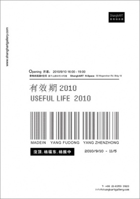 有效期2010——没顶,杨福东,杨振忠 (群展) @ARTLINKART展览海报