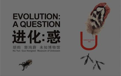 EVOLUTION - A QUESTION (group) @ARTLINKART, exhibition poster