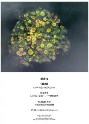 SU-MEI TSE - ELEGY (solo) @ARTLINKART, exhibition poster