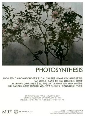 PHOTOSYNTHESIS (group) @ARTLINKART, exhibition poster