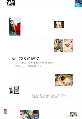LIN ZHIPENG (AKA NO. 223) SOLO EXHIBITION (solo) @ARTLINKART, exhibition poster