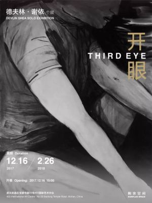 THIRD EYE - DEVLIN SHEA SOLO EXHIBITION (solo) @ARTLINKART, exhibition poster