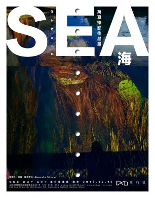 SEA - WAN XIA (solo) @ARTLINKART, exhibition poster