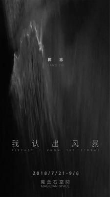 我认出风暴——蒋志 (个展) @ARTLINKART展览海报