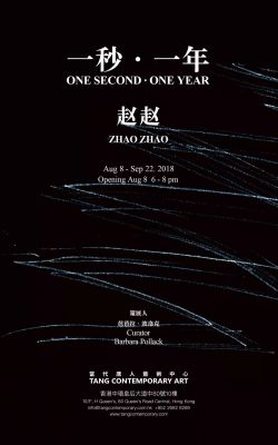 ONE SECOND · ONE YEAR - ZHAO ZHAO (solo) @ARTLINKART, exhibition poster