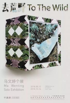 MA WENTING SOLO EXHIBITION - TO THE WILD (solo) @ARTLINKART, exhibition poster