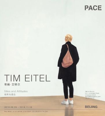TIM EITEL - SITES AND ATTITUDES (solo) @ARTLINKART, exhibition poster