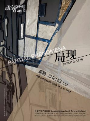 ZHENG LU - PARTIAL PHENOMENA (solo) @ARTLINKART, exhibition poster