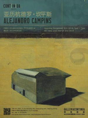 CONT[IN]UA - ALEJANDRO CAMPINS (solo) @ARTLINKART, exhibition poster