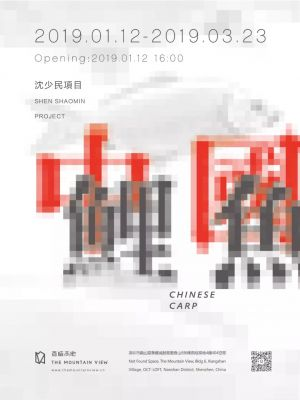 SHEN SHAOMIN PROJECT——CHINESE CARP (solo) @ARTLINKART, exhibition poster