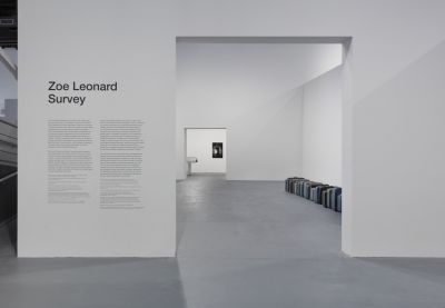 ZOE LEONARD - SURVEY (solo) @ARTLINKART, exhibition poster