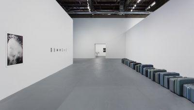 Zoe Leonard - Survey | exhibition | ARTLINKART | Chinese