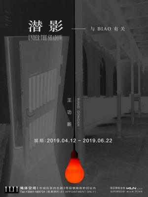 王功新——潜影—与BIAO有关 (个展) @ARTLINKART展览海报