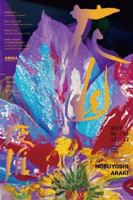 KAYU - NOBUYOSHI ARAKI (solo) @ARTLINKART, exhibition poster
