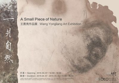 A SMALL PIECE OF NATURE - WANG YONGLIANG ART EXHIBITION (solo) @ARTLINKART, exhibition poster
