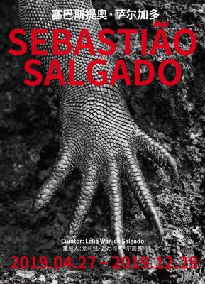 塞巴斯提奥·萨尔加多 (个展) @ARTLINKART展览海报