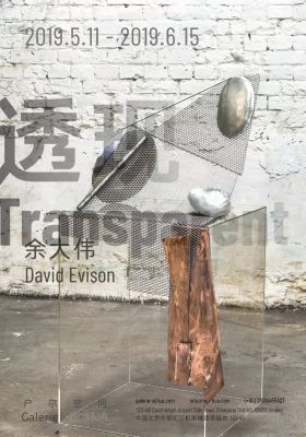 DAVID EVISON - TRANSPARENT (solo) @ARTLINKART, exhibition poster