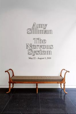 AMY SILLMAN - THE NERVOUS SYSTEM (solo) @ARTLINKART, exhibition poster