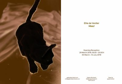 ELLIE DE VERDIER - MEED (solo) @ARTLINKART, exhibition poster
