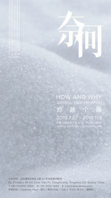 HOW AND WHY - ZHENG LU SOLO EXHIBITION (solo) @ARTLINKART, exhibition poster