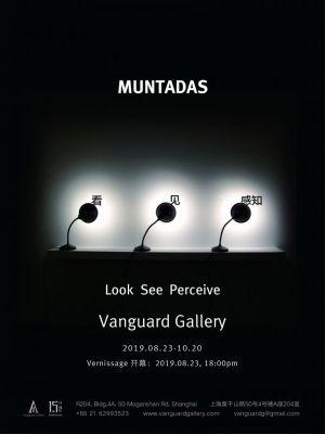 MUNTADAS - LOOK SEE PERCEIVE (solo) @ARTLINKART, exhibition poster