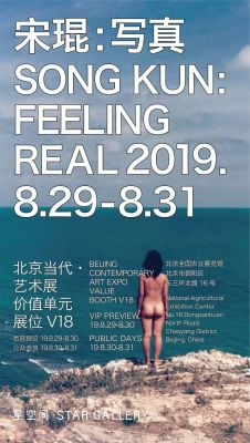 STAR GALLERY@BEIJING CONTEMPORARY 2019(VALUE) (art fair) @ARTLINKART, exhibition poster