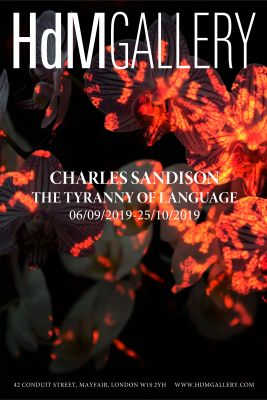 CHARLES SANDISON - THE TYRANNY OF LANGUAGE (solo) @ARTLINKART, exhibition poster