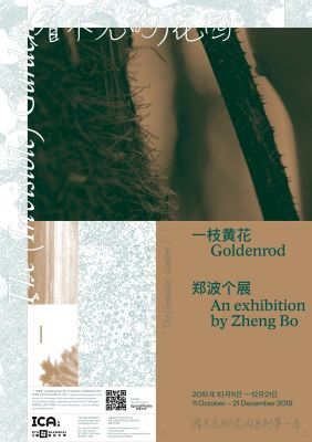 GOLDENROD - ZHENG BO SOLO EXHIBITION (solo) @ARTLINKART, exhibition poster