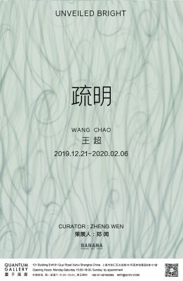 UNVEILED BRIGHT - WANG CHAO & CONCEALED LIGHT - SUN DATANG (group) @ARTLINKART, exhibition poster