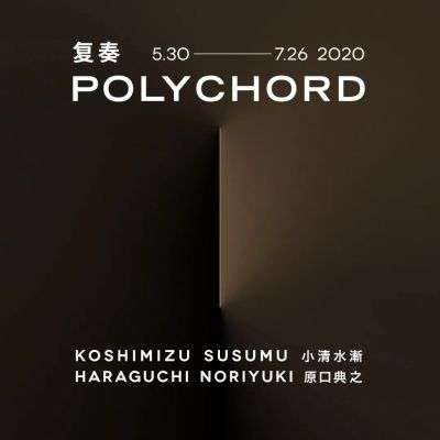 POLYCHORD - KOSHIMIZU SUSUMU & HARAGUCHI NORIYUKI (group) @ARTLINKART, exhibition poster