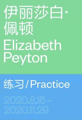 伊丽莎白·佩顿——练习 (个展) @ARTLINKART展览海报