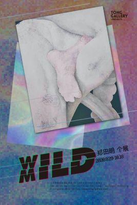 XXILD - ZHENG TIANMING'S SOLO EXHIBITION (solo) @ARTLINKART, exhibition poster