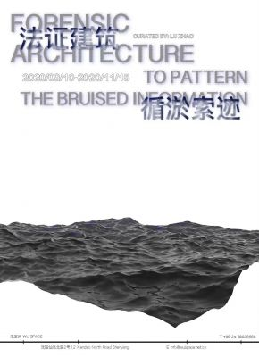 FORENSIC ARCHITECTURE - TO PATTERN THE BRUISED INFORMATION (solo) @ARTLINKART, exhibition poster