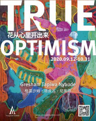 TRUE OPTIMISM - GRESHAM TAPIWA NYAUDE (solo) @ARTLINKART, exhibition poster